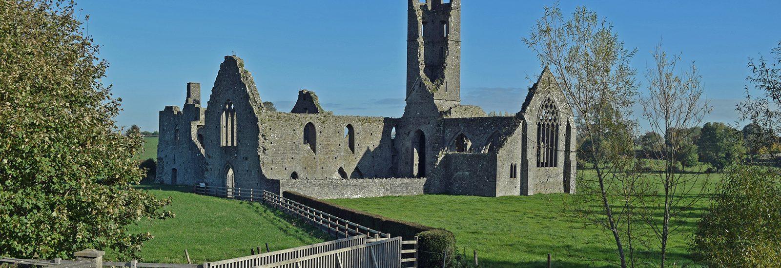 Kilmallock Abbey